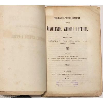 0029.  Josip Ettinger: Sriemsko-slavonsko-hrvatske divje životinje zvieri i ptice 1857.- first edition !!